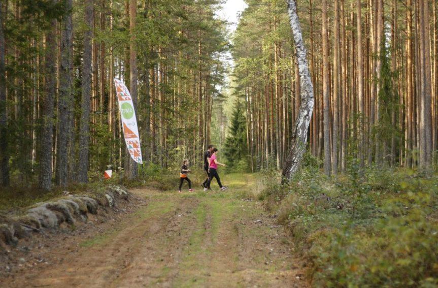 Tallinna neljapäevakutel tänavusel hooajal 12 170 osaluskorda